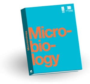 Thesis And Dissertation In Food Microbiology